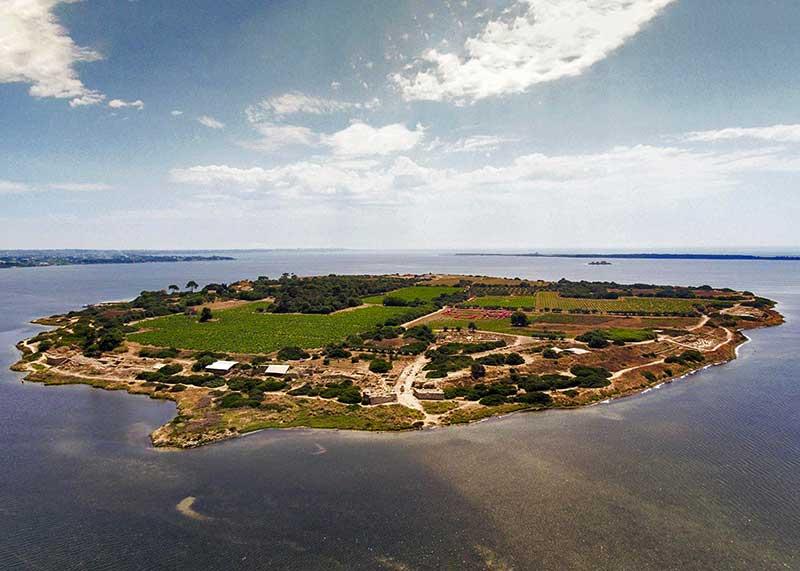 Isola di Mozia 2
